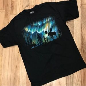 Men's Alaska Northern Lights Moose T-shirt Med